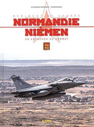 Rgiment de chasse Normandie-Nimen : Un escadron au combat