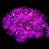 Walant 30er LED Rosen Lichterkette,weich Stoff Rosen Lichterkette Blumen Kunstblumen für Weihnachtendeko Party Hochzeit Valentinstag Deko,Batteriebetrieben 4.5Meter (Violett, 4.5m)