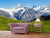 Fototapete Sommerwiese in den Alpen KT356 Größe: 400x280cm Alm Sommer Grün