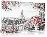 Paris Ölgemälde, Schwarz, Weiß, Rot, Rosen aus Canvas Wall Art Print Bild, schwarz/rot/weiß, A0 91x61cm (36x24in)