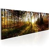 Bilder 135x45 cm – XXL Format - Fertig Aufgespannt – TOP - Vlies Leinwand - 1 Teilig - Wand Bild - Kunstdruck - Wandbild - Wald Natur Landschaft Baum c-B-0173-b-a 135x45 cm B&D XXL