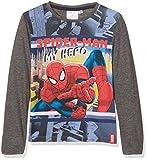 DC Comics Spiderman Drawn, Camiseta para Niños, Gris (Grey 19-4010TC), 5-6 Años