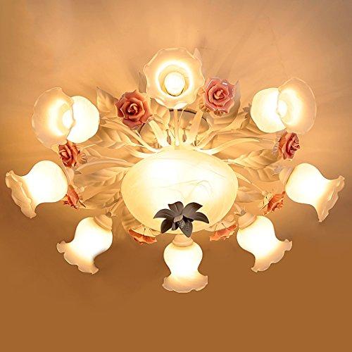 Top-selling-laterne (LightSei EU Led Deckenleuchten Eisen Runde Wohnzimmer Schlafzimmer Lichter Korridor Lichter Lampen Und Laternen Blumen Und Lichter Bauernhaus Stil -E27)