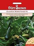Zucchini Black Forest F1 von Dürr-Samen