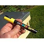Queen bee marker pen set (5 pens) 10