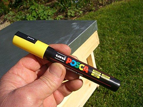 Queen bee marker pen set (5 pens) 2