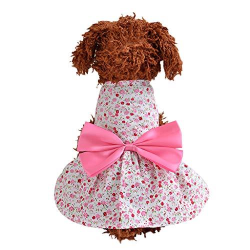 Geilisungren Ropa para Mascotas Perros pequeños, Camiseta del Animal Perrito Arco Princesa Vestido Impresión Ropa para Mascotas returom Linda Chaleco Tutu Vestido Falda Encaje Verano Pulóver
