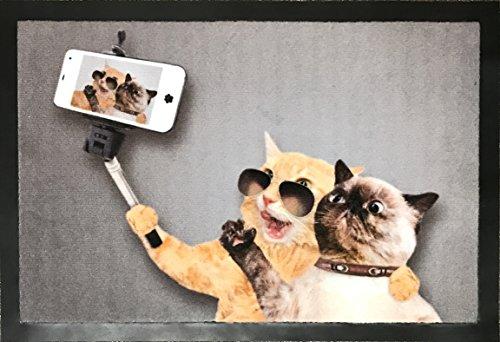 Fußmatte Hamat / Lustige Schmutzfangmatte mit Tieren / 40x60 cm Fußabtreter / Für den Außen- oder Innenbereich / Pflegeleichte Sauberlaufmatte mit Katzen-Motiv / Material: Polyamid & Vinyl