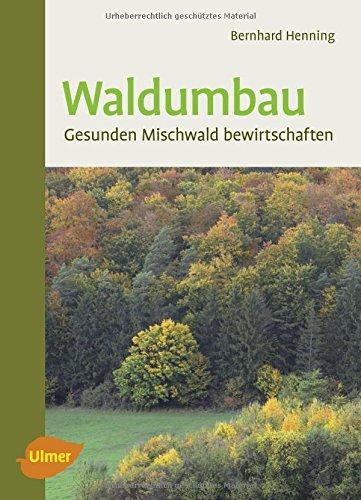 Waldumbau: Gesunden Mischwald bewirtschaften