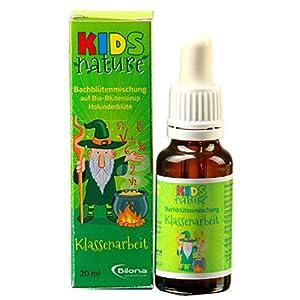 Kids Nature Klassenarbeit, Bachblüten-Komplexmittel *alkoholfrei*, 20ml Stockbottle