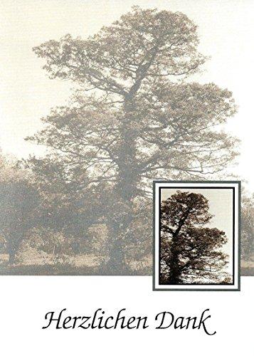 Trauer Danksagungskarten Trauerkarten mit Innentext Motiv Baum 10 Klappkarten DIN A6 im Hochformat mit weißen Umschlägen Umschlägen im Set Dankeskarten Dankeschön Karten Kuvert Danke sagen Beileid K108