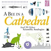 ABee in a Cathedral And 99 Other Scientific Analogies by Levy, Joel ( Author ) ON Sep-27-2012, Paperback