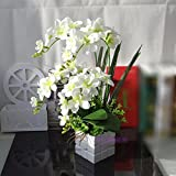 GBHNJ Faux Style Européen Pu Blanc Orchidée Artificiel Décoration