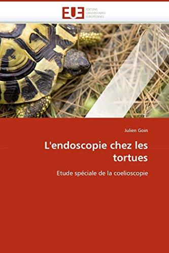 L''endoscopie chez les tortues