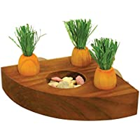 Rosewood Boredom Breaker Carrot Toy 'n' Treat Holder for Small Animals