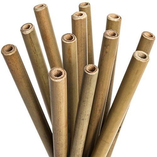 Alle Natürlichen Bambus Trink-Strohhalme: 20 cm Set von 12 Wiederverwendbaren Strohhalmen - Enthält 2 Bonus Nylon Reinigungsbürsten - Nachhaltig, Nicht Toxisch und Sicher, für Haus und Arbeit -