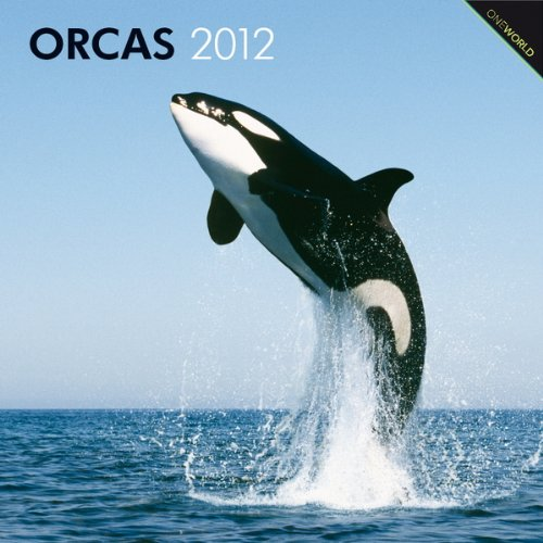 Orcas 2012