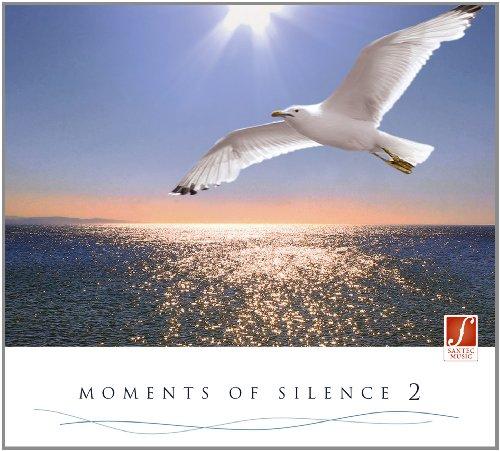 CD Momente der Stille 2: Ruhige Musik für die Seele. Entspannung für den Körper.
