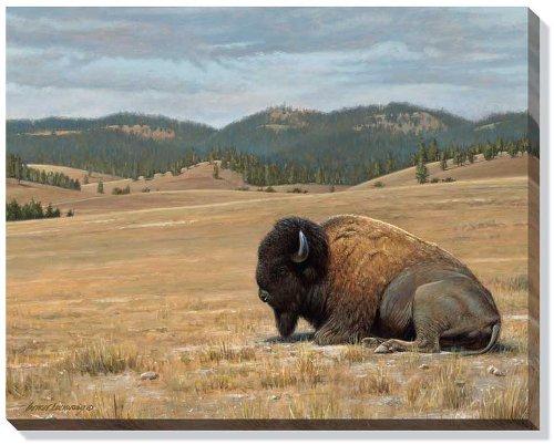 casa-de-nuevo-bison-by-george-lockwood-galeria-envuelto-impresion-de-lienzo-edicion-abierta