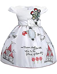 Internet Wedding Pageant Embroider Castle Flower Girl Tulle Party Ball Gown Dress Flower Baby Girl Princess