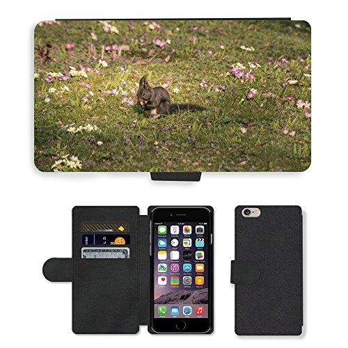 Just Mobile pour Hot Style Téléphone portable étui portefeuille en cuir PU avec fente pour carte//m00139840écureuil printemps Eat monde animal//Apple iPhone 6Plus 14cm