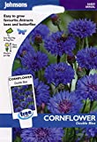 johnsons seeds - Pictorial Pack - Fiore - Fiordaliso Double Blu - 250 Semi
