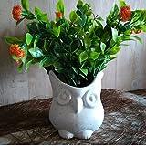 #6: Lasaki Owl White Ceramic Handmade Planter