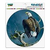 Graphics and More Adler-Raptor, für Auto, Kühlschrank, Schließfach, Vinyl-Magnet, rund