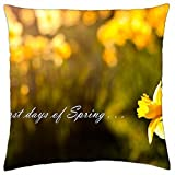 The first days of spring ... - Throw Pillow Cover Case (18