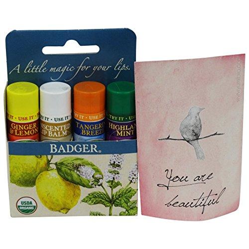 badger-balm-set-regalo-4-burrocacao-biologici-con-olio-di-oliva-e-aloe-vera-profumazioni-zenzero-e-l