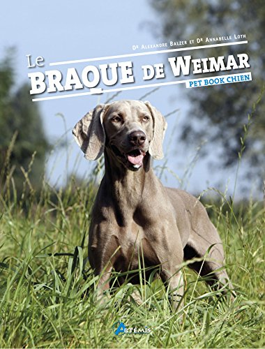 Le Braque de Weimar