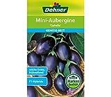 Dehner Gemüse-Saatgut, Mini-Aubergine, 'Ophelia', 5er pack (5 x 7 g)