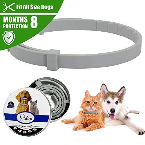 Aubess Floh- und Zeckenhalsband für Haustiere, Hunde, Katzen, wasserfest, verstellbar, Anti-Floh-Gummi-Halsband, natürlich sicher
