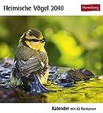 Heimische Vögel - Kalender 2018: Kalender mit 53 Postkarten