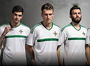 2016 UEFA Euro Cup Nordirland Home Football Jersey in Grün