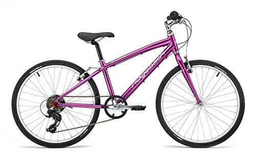 Ridgeback Dimension 24 Purple - nur 9 kg (Jahre Altes Fahrrad 9)