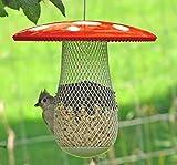 La meilleure mangeoire pour oiseaux sauvages afin d'en attirer plus (Rouge)