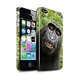 Stuff4 Clipser Brillant Coque de Coque pour Apple iPhone 4/4S / Selfie Babouin...