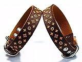 Lushpetz Designer Inspiriertes Hundehalsband in braun, schwarz oder weiß, passende Leinen separat erhältlich (Klein, Braun)