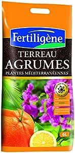 Fertiligene 8455 Terreau Agrumes et Plantes Méditerranéennes 6 L