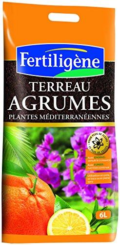 fertiligene-8455-citricos-suelo-6l-y-plantas-mediterraneas