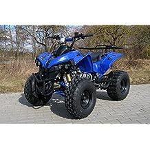 Kinder Quad S-10 125 cc Motor Miniquad 125 ccm blau Warriorer
