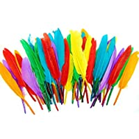 Kids B Crafty Quill Feathers Assorted Colours 14cm Art Crafts Collage Fly Fishing Dress Up Hats