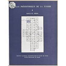 Atlas préhistorique de la Tunisie (4) : Souk el Arba