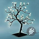 48 LED Baum mit Blüten Blütenbaum Lichterbaum warm weiß 45 cm hoch Trafo IP20 Weihnachtsbeleuchtung Weihnachtsdeko Weihnachten Xmas