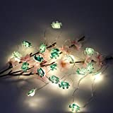 Elephant Accessories LED String Lights, Battery Operated Copper Fairy String Lights, Indoor Decoration for Home Party Children Bedroom