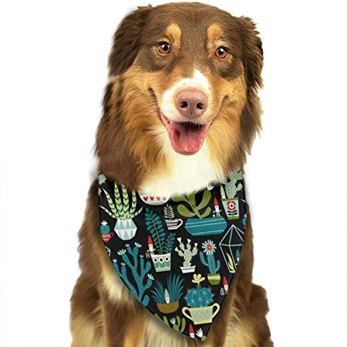 nxnx Bandana-Washable and Adjustable Pet Triangle Scarf Bibs Gnomes Succulents Cacti Terrarium Accessories for Small Medium Large Dogs/Cats