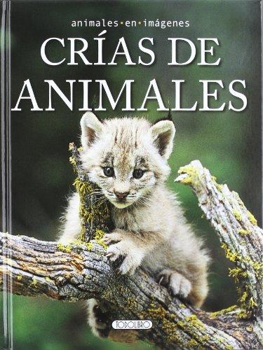 Crías de animales (Animales en imágenes)