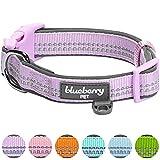 Blueberry Pet 2cm M 3M Reflektierendes Neopren-Gepolstertes Hundehalsband in Lavendel, Mittlegroβe Halsbänder für Hunde