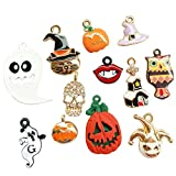 Dandan DIY Assorted 12pcs Halloween Alloy Charm Pendant Pumpkin Owl Ghost Skull Jewelry Making (Halloween Style)